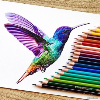 kingfisher-color-pencil-drawing-by-danstirling.preview