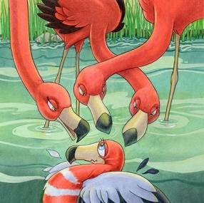 Flamingo questions